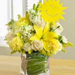 It's Your Sunny Day – 1-800 Flowers