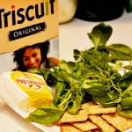 Triscuit Encourages Home Farming