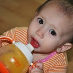 mOmma's BPA Free Toddler Feeding