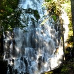 Great Places To Hike Near Portland, Oregon – Ramona Falls Mt. Hood