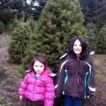 The Great Christmas Tree Hunt Of 2011