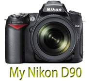 My Nikon D90 Pictures