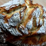 Crusty Dutch Oven Organic White Bread 