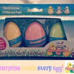 Easter Basket Gift Ideas – Hide 'em & Hatch 'em Eggs