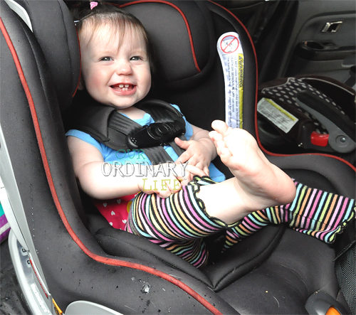 Chicco Nextfit carseat (1)