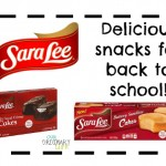 Back To School: Sara Lee Snack Cakes – Giveaway