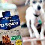 Getting Pets Ready For Fall With PetArmor  #TickFreeFall