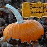 Make the Most Out of the Fall Harvest – Savvy Spending Tips For Fall