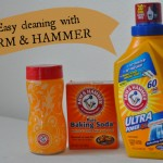 Cleaning & Laundry: ARM & HAMMER™ – $100 Gift Card Giveaway