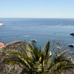 Catalina Express – Your Ride To Catalina Island