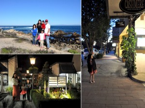 Hofsas House Carmel By The Sea California (8)