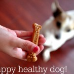 Family Pets: Milk-Bone® Brushing Chews – Giveaway