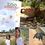 Free Printable Zoo Scavenger Hunt & Giveaway