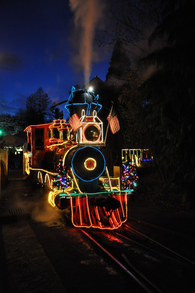 zoolights 2010 oregon zoo train