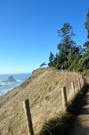 hiking on the oregon coast ecola state park