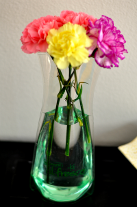 flowers vase clear plastic bag