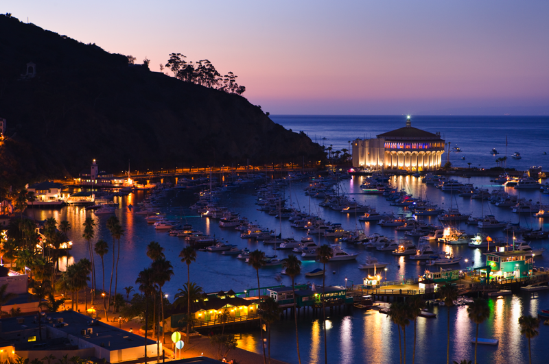 Catalina night harbor view from hill