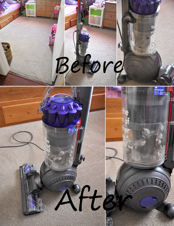 Dyson DC65 Vacuum Cleaner (14)