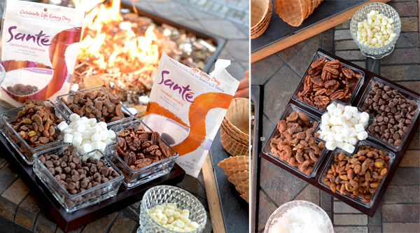 Sante Nuts Outdoor Smore Recipe (3)