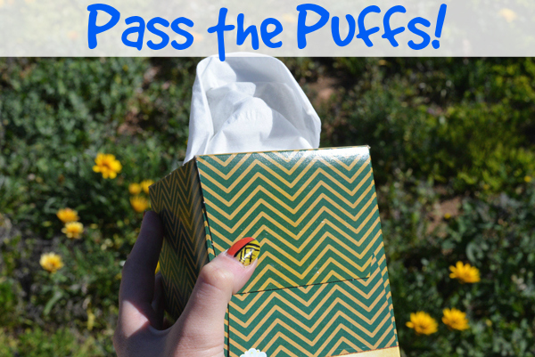Pass The Puffs Lotion Tissue Soft (1)