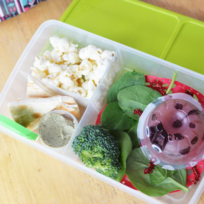 Easy Lunchbox Solutions – Ladybug DOLE Mixations® Lunchbox Idea