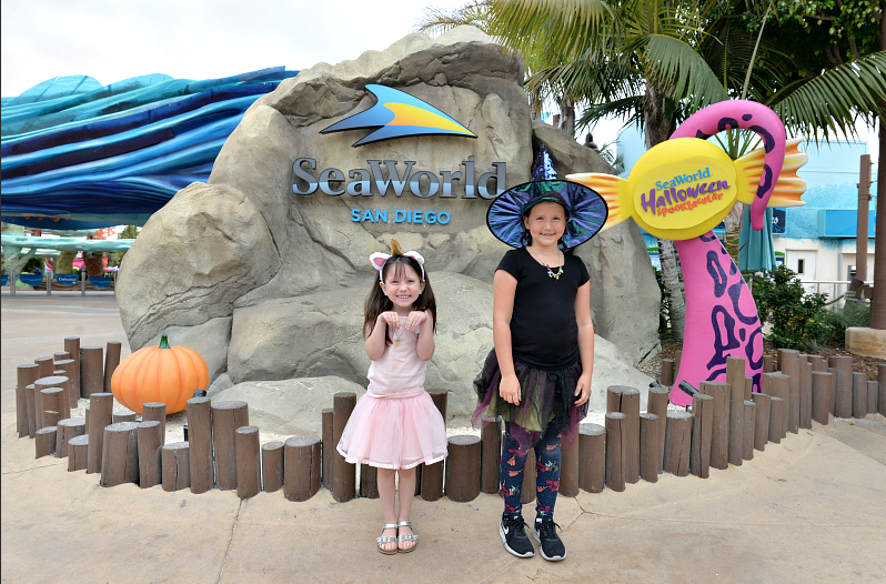 SeaWorld's Spooktacular Kid-Friendly Halloween Event in San Diego